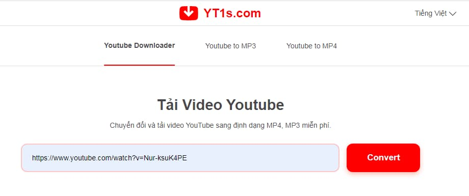 paste video YouTube